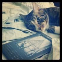 Nuggz and Kindle