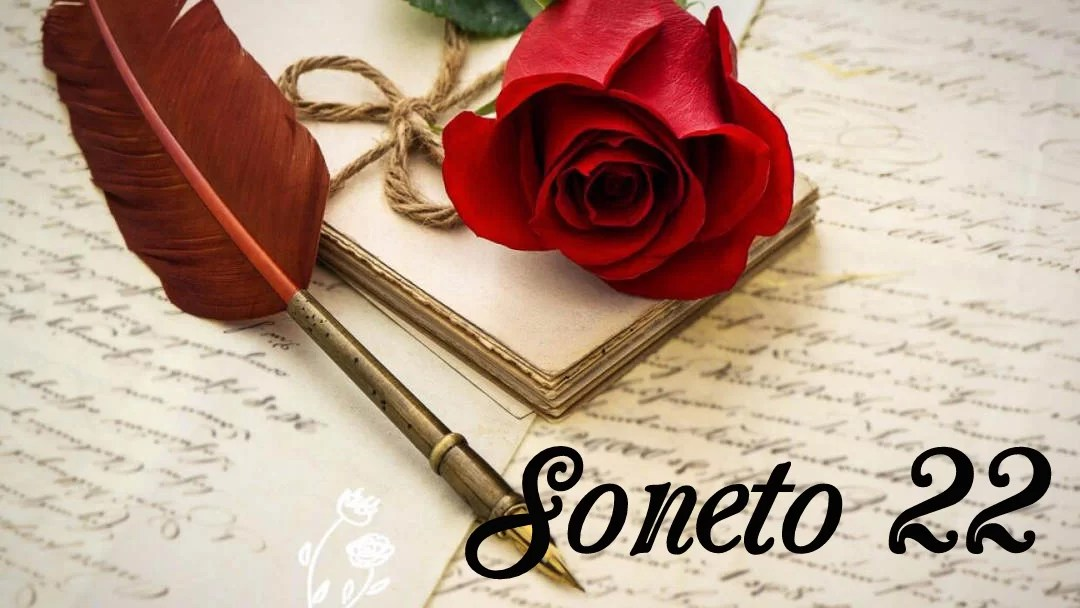 Soneto 22 Neruda