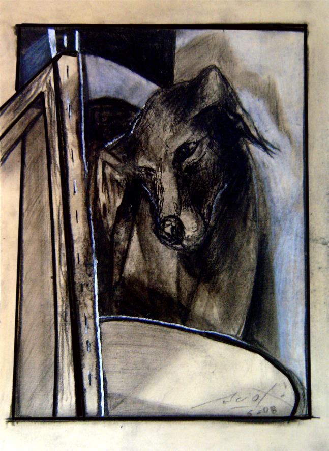Nadie Patea Un Perro Muerto 03