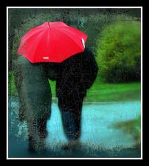 Zwei Menschen unterm Regenschirm