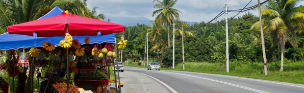 Fruit stall on the road to Taiping