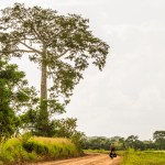 Cycling on remote Belize track