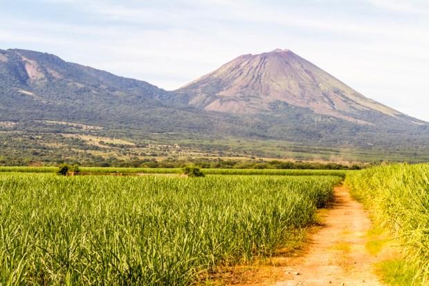Path to volcano