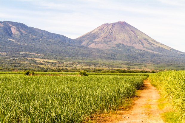 Path to volcano