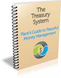 The Treasury System
