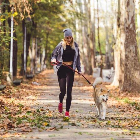 PaceTrail Pet Article 1 Popular