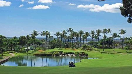 Waikoloa Resort Golf Package