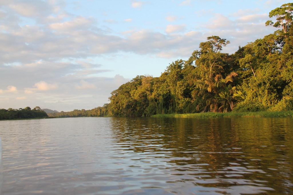Un des nombreux canaux permettant d'admirer les mangroves du Parc National de Tortuguero où il est possible de voir et de contempler l'écostystème riche du Costa Rica. Que voir au Costa Rica ?