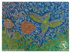 hummingbird-fanny-mendoza