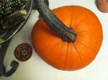 pumpkin from our garden!