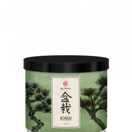 Kringle Candle Bonsai Zen Tumbler 411g z 3 knotami