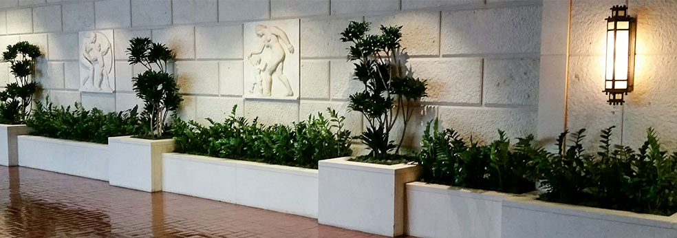 Interior Landscape Los Angeles Indoor Plants For Office