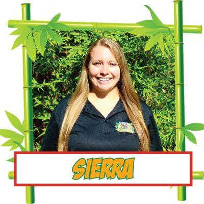 Sierra w:frame