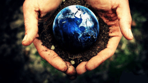 Mulching & Soil Restoration