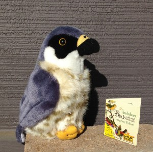For Sale - Toy Stuffed Peregrine