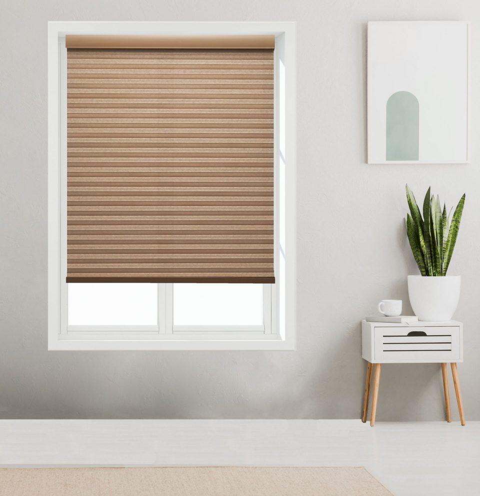 Light Filtering cordless Cellular shades on window