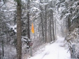Winter Entrance to the Hermitage