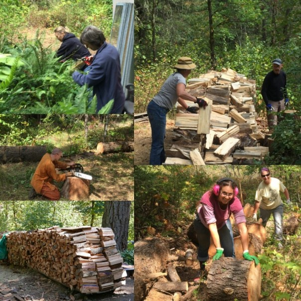 Gathering firewood and prepping the gardens for winter.