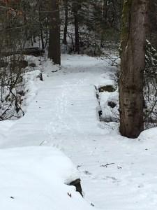 2016-ph-bridge-w-snow