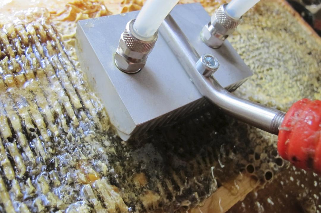 Honey Paw Uncaps Frame of Honey
