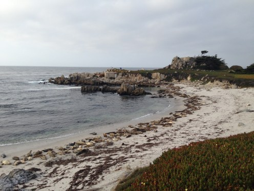 A local beach in Monterey