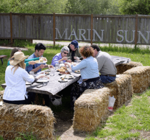 West Marin Food & Farm Tours combines van adventures, delicious food and a history of the region. Photo courtesy of West Marin Food & Farm Tours.