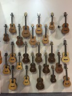 Cordoba 'Ukuleles selection of 'ukuleles and guitarleles