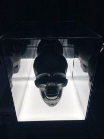 Vodka Skull Head