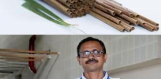 Best Alternative to Plastic Straws, Coconut straw, Coconut leaf straws, Coconut leaf straw