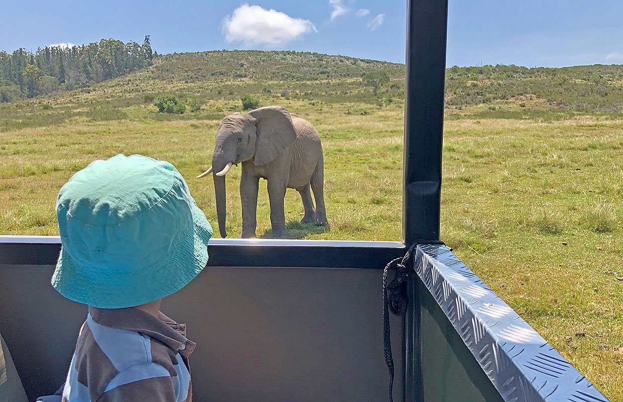 Safari Game drive with Kids