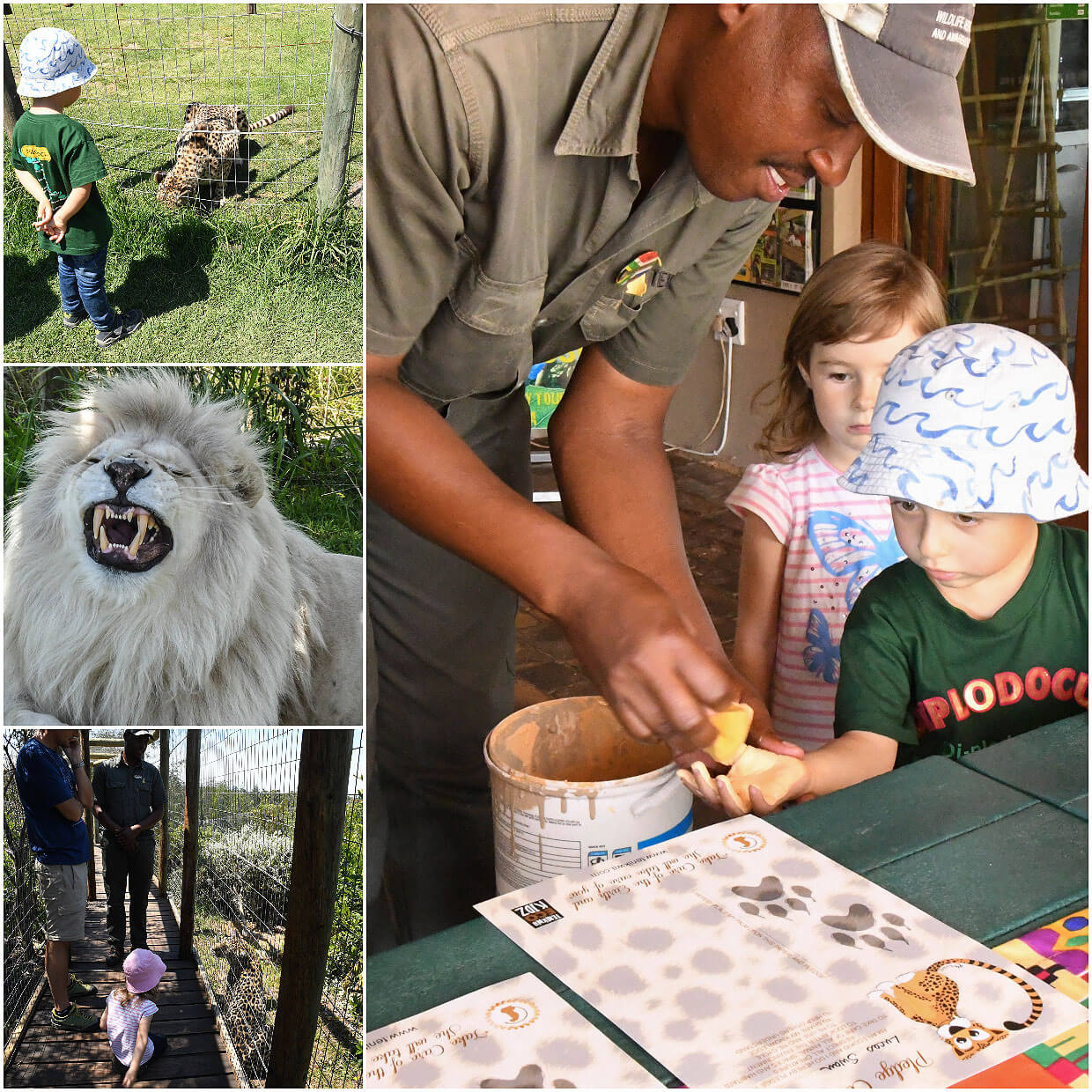Tenikwa Wildlife and rehabilitation center