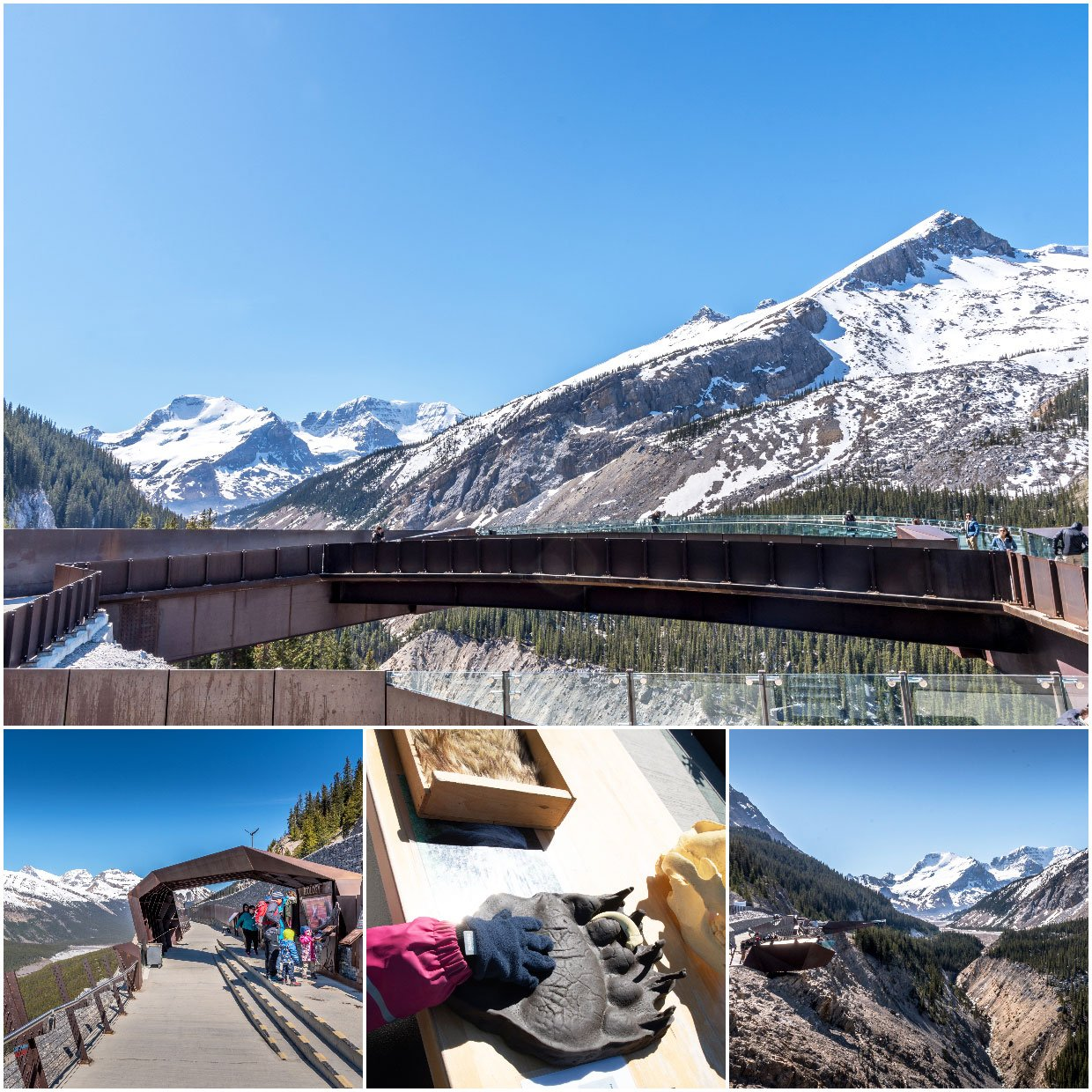 views from the skywalk in canada