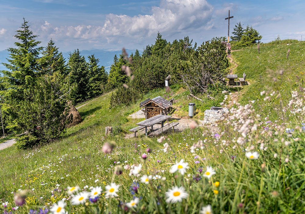 flower meadow and bbq station at the panorama Hike at Stanserhorn