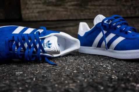 blue-12