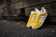 yellowweb-6
