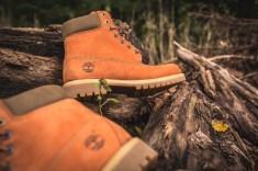 timberland-6-in-orange-16