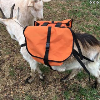 Goat Trainer Soft Saddle