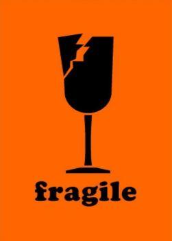 #DL1561  2×3″   Fragile Label (Orange/Black) $10.25/piece