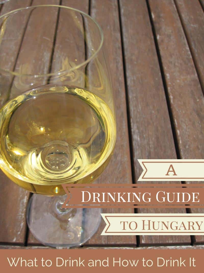 A Drinking Guide to Hungary - What to Drink and How to Drink It
