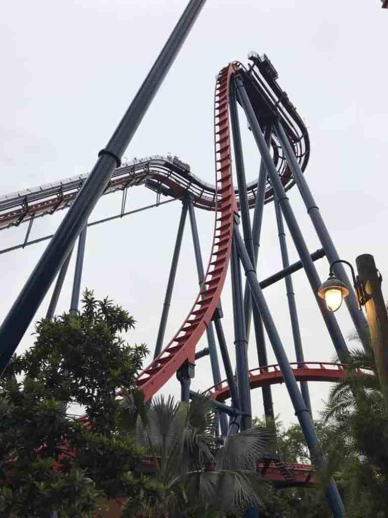 Sheikera, Busch Gardens Tampa