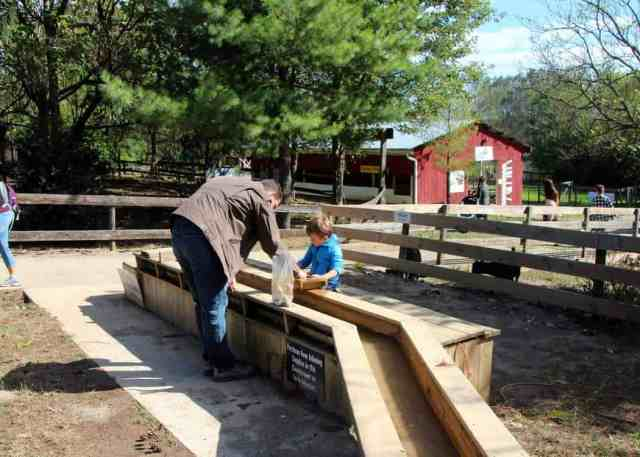 Great Country Farms Bluemont, Virginia mining for gems