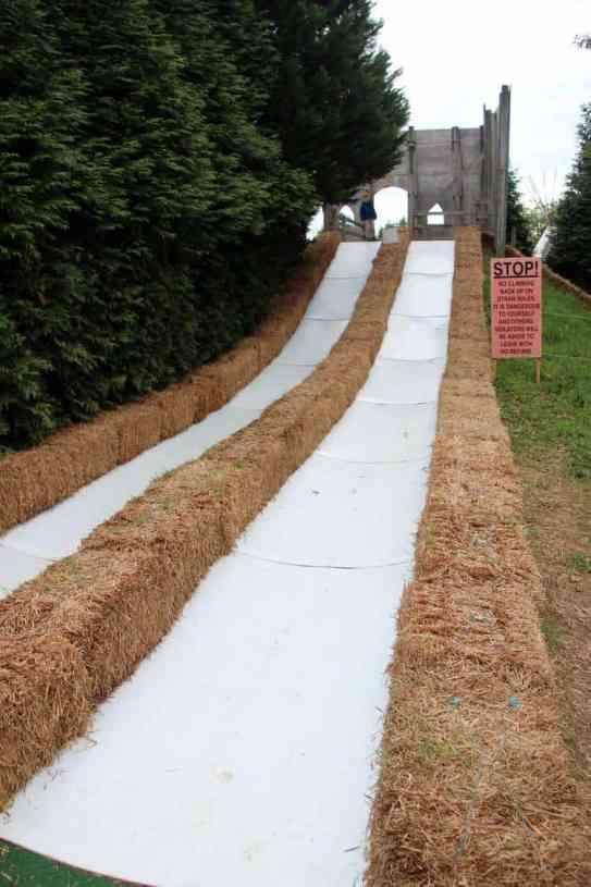 Burke Nursery Pumpkin Playground Slides