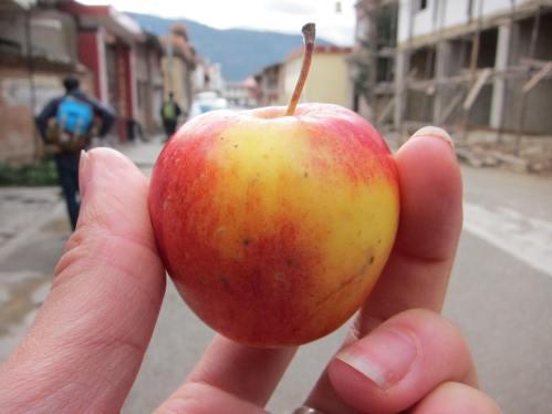 A mini apple!