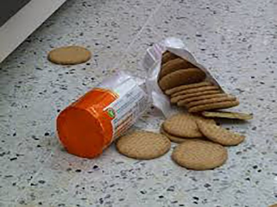 spilt biscuits