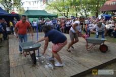 30 sierpnia | Dożynki w Dziewiętlicach | Tegoroczne gminne święto plonów odbyło się w Dziewiętlicach. | http://paczkow24.pl/fotorelacja-dozynki-gminne-2015/