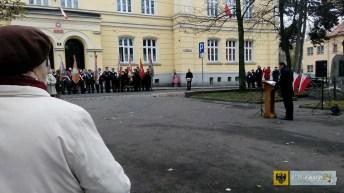 foto: Tomasz Tworzydło