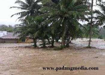 Batang Malakutan Kolok yang meluap menyebabkan puluhan ha sawah warga dan rumah terseret air bah. (tumpak)