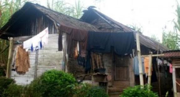 Rumah Tayuih di Bukik Batabuah. (fajar)