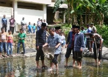 Wakil Ketua DPRD Sawahlunto melepas ikan ke lubuk larangan di