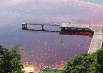 Minyak tumpah di perairan Teluk Bayur. (foto: humas Pemko Padang)